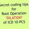 "Coding tips for Root Operation ""Dilation"" for IP coders"