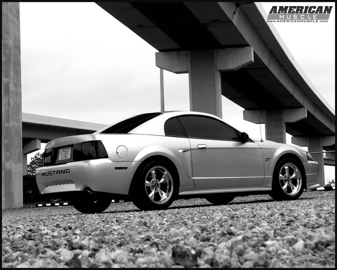 American Muscle Cars Mustang Wallpaper Ford Mustang Wallpapers Amp Mustang Backgrounds