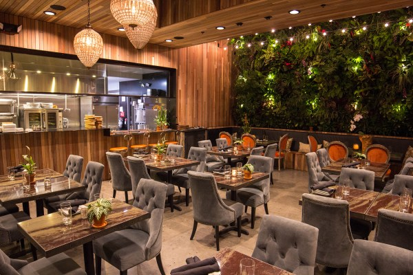 Patio Group Restaurant Development & Hospitality - Ani