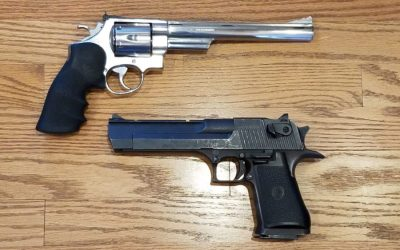 Survival Artillery:  The S&W Model 629 and the Desert Eagle XIX .44 Magnums