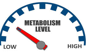 Train your metabolism first