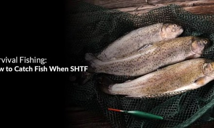 Survival Fishing: How to Catch Fish When SHTF