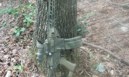My Go-To Carbine Setup