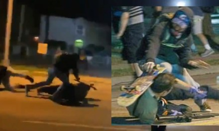 Mike Adams:  FIGHT for your LIFE: Stunning video shows moment armed security man had to shoot multiple rioters from the ground or be beaten to death by Black Lives Matter thugs