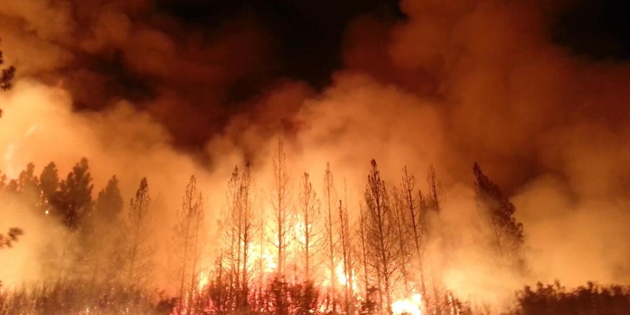 Are the Wildfires out West a Coordinated Attack?