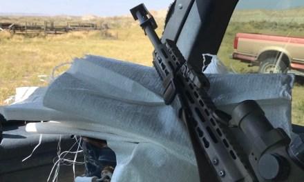 Badlands Fieldcraft: Gear Review: Primary Arms Platinum 1-8x ACSS Riflescope