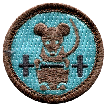 Funny Merit Badges Sample