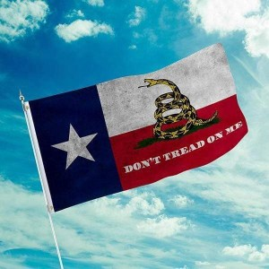 Don't Tread On Me Texas Flag