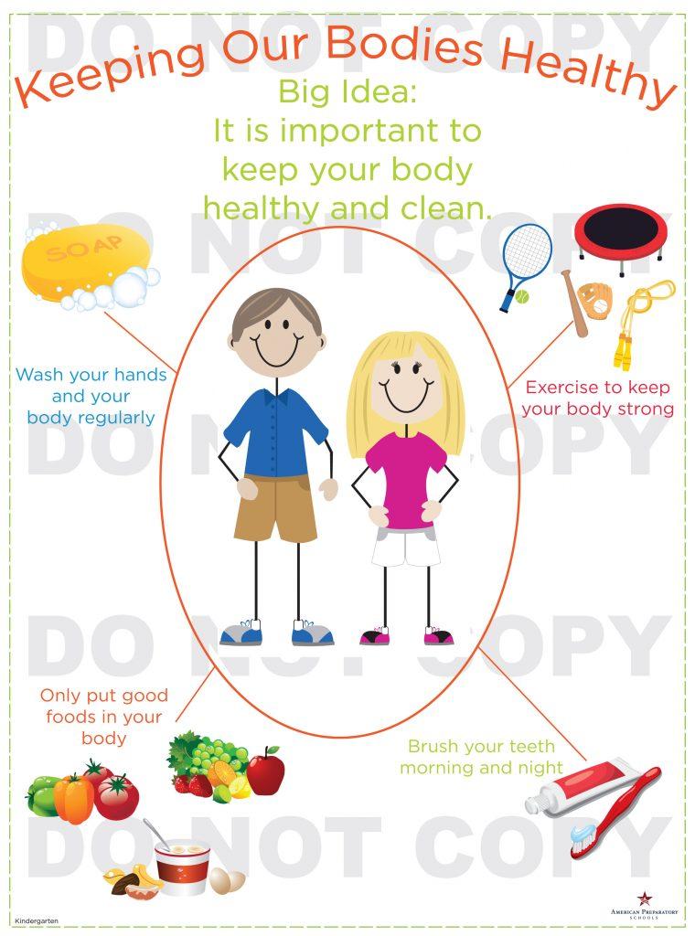 Healthy Bodies  Kindergarten  American Preparatory Schools