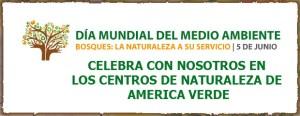 Bosques: La Naturaleza a su Servicio - Día del Ambiente