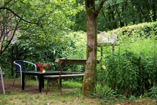 De heerlijke binnentuin van het Beauforthuis