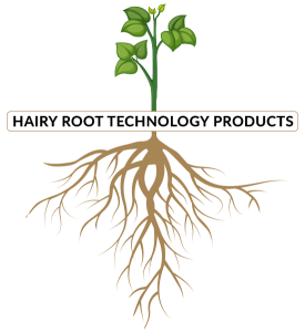 amerstem-technology-products-root