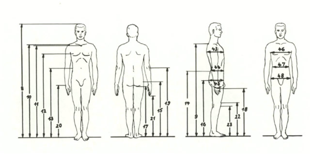 Anthropometry Definition