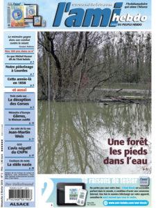 01 ADP 05 ALSACE une - Après la mise en eau du polder d'Erstein : une forêt les pieds dans l'eau