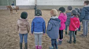 equitation - PORT DU RHIN: UNE SECTION SPORTIVE SCOLAIRE ÉQUITATION