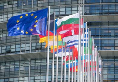 Parlement30 031 - Strasbourg capitale de la démocratie : un projet pour la région, la France, l'Europe