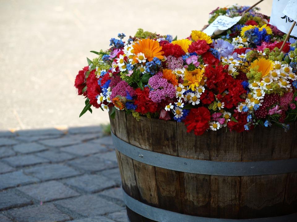 Creare il proprio giardino a costo zero con il riciclo