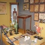 2006-5-12 Mostra 'Dagli archivi delle scuole romane'  (6)