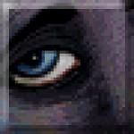 Illustration du profil de fenrix
