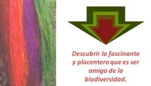 Concepto de marca para el modelo ecoturístico amigable con la biodiversidad