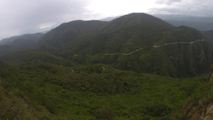 Cuidado de flora y fauna en Santa Catarina Lachatao