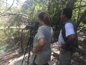 Manejo de visitantes en Copalita