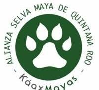 K´aax Mayas - Alianza Selva Maya de Quintana Roo U.E. de R.L.