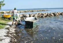 Red Tide Cortez Fishermen