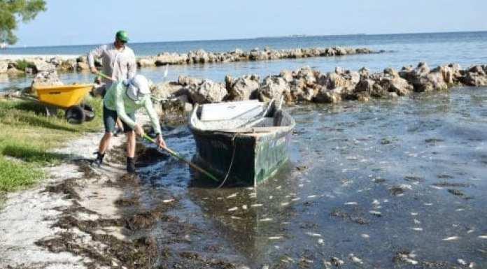 Red Tide Cortez Fishermen