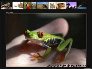 List of Photo Album Generator Softwares for Website