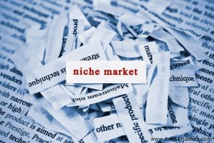 Micro Niche Finder Tool to Find High CPC Keywords & Niche