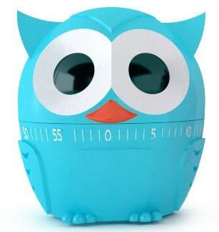 Owl Kitchen Timer