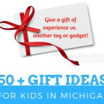 Top Experience Gifts In Michigan For Kids