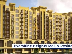 Evershine Heights Mall & Residency