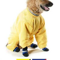 Friday Fetch: Snowsuits for Dogs