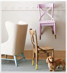 Dipped Chairs with Dachshunds
