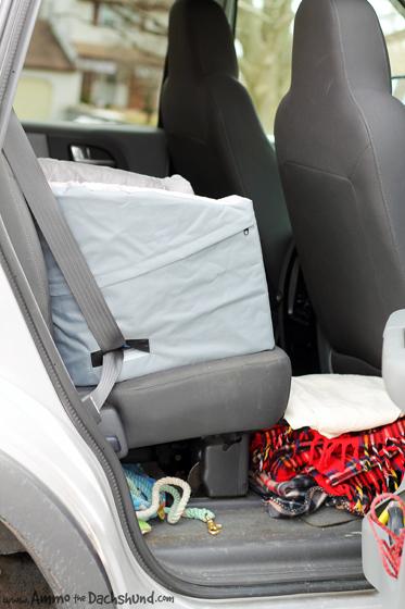 Dachshund car harness