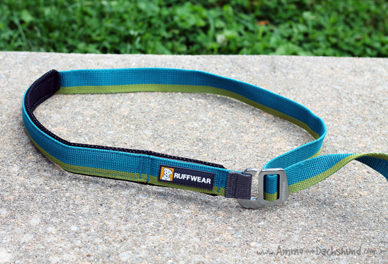 Ruffwear Roamer Leash Review & Giveaway