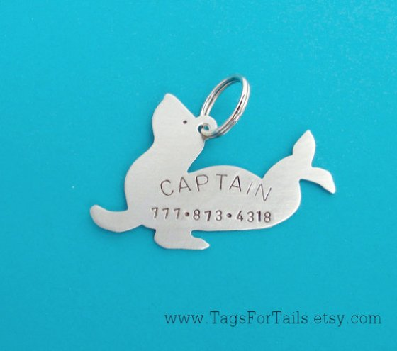 Tags for Tails Review & Giveaway // Ammo the Dachshund