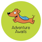 Adventure Awaits with Ammo the Dachshund