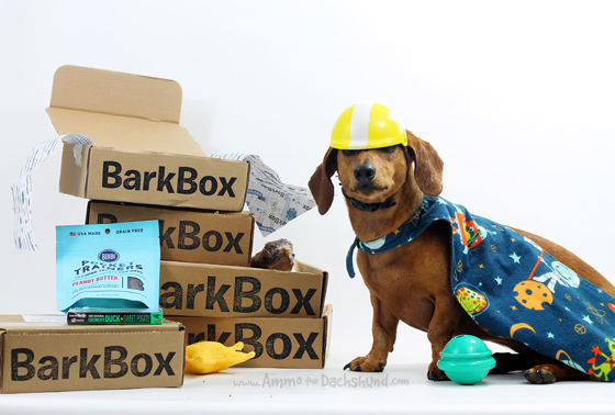 Birthday Week: Enter to Win a Free Barkbox Subscription