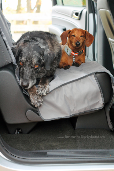A Seat Cover from Ruffwear to keep Pet Hair at Bay