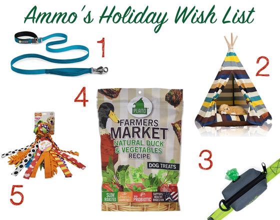 Ammo's Christmas Wish List