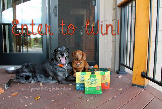 VitaLife All Natural Dog Treats Review + Giveaway