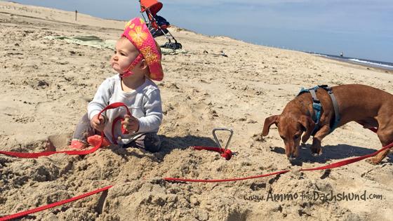 April Beach Babes
