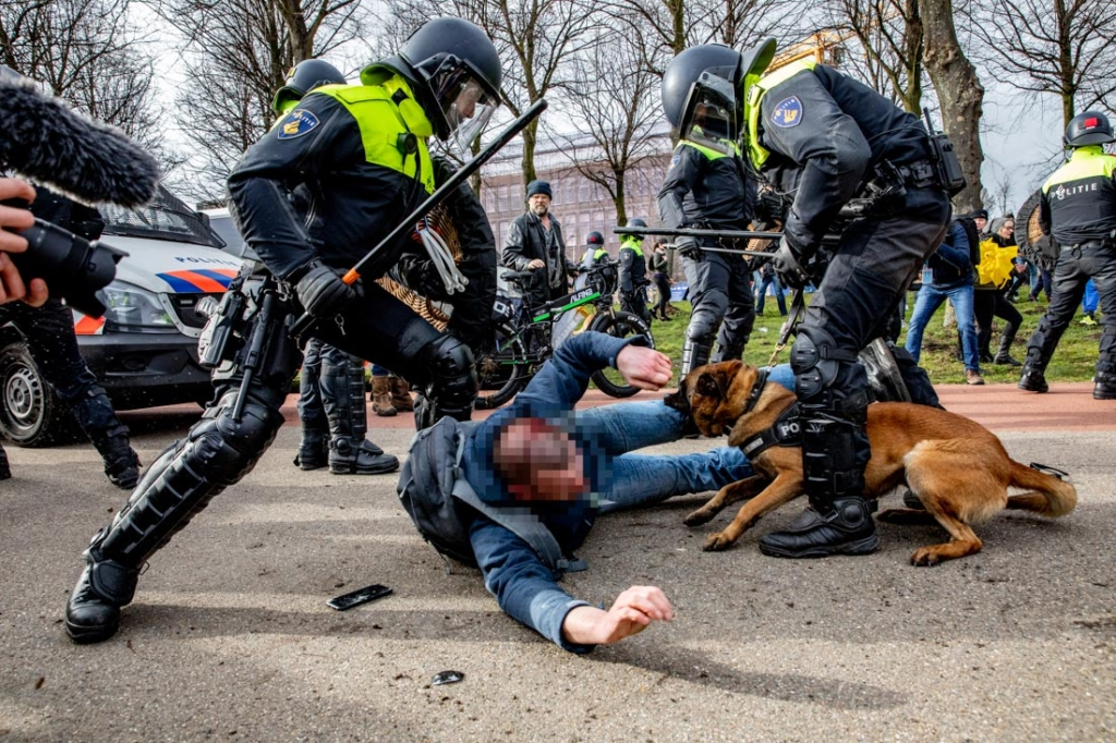 Police officers detain a protester during a protest on the Malieveld against the coronavirus policies and the government