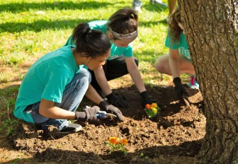 Photos submitted Aaliyah Jones, Starr Hume and Brittany Morgan plant flowers at Cowan Park on May 1.