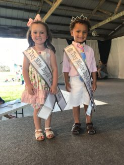 Photos submitted:Tiny Miss Boyle County Fair Mia Mullins stands beside Tiny Mister Boyle County Fair Braxton Thornbur, both sporting floral accents.