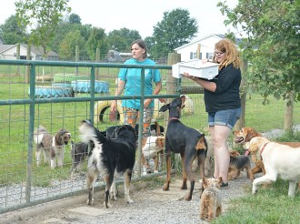 Jenna Gordon, left, and Kristen Wyat talk about which puppy pool could use a batch of ice cubes from Jenna's freezer.