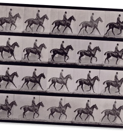 a horse moving captured in many frames on this contact sheet [ 1020 x 900 Pixel ]